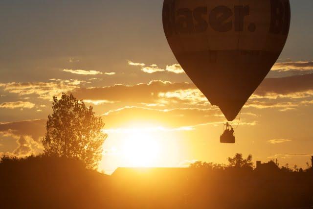Heißluftballon vor Sonnenuntergang in der Pfalz