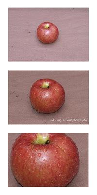 Herbstzeit – Apfelzeit