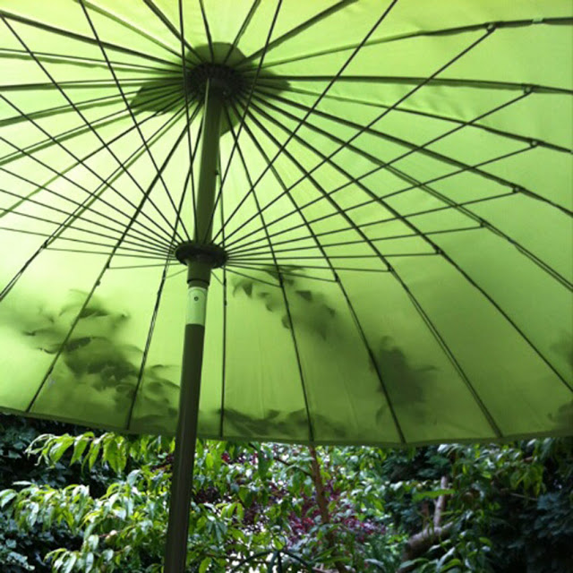 Umbrella {Beauty is where you find it}