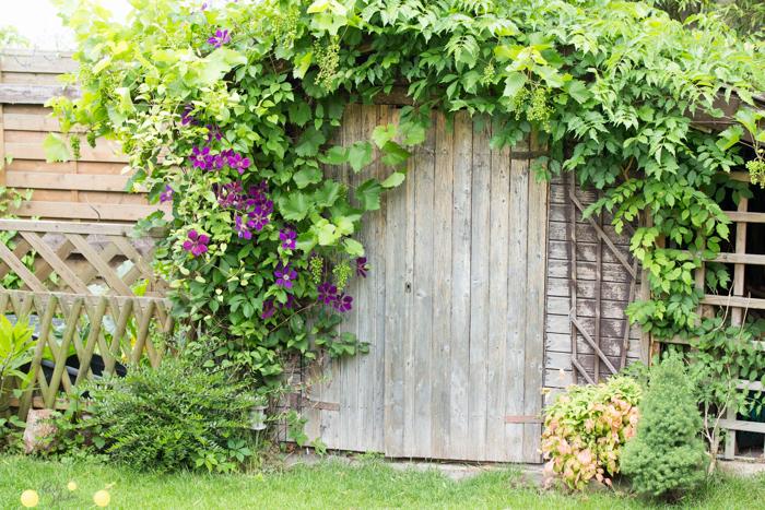 12 Tipps für einen kleinen Garten