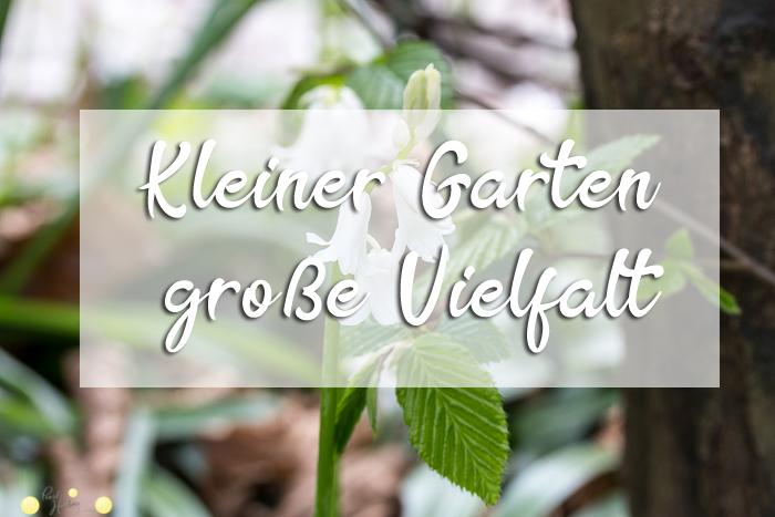 Kleiner Garten – große Vielfalt