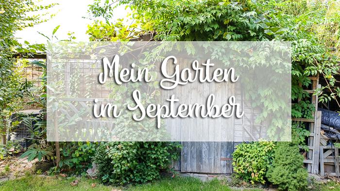 Mein Garten im September